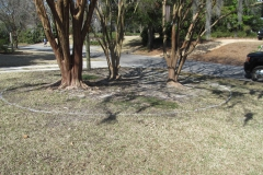 Before: Redesign front beds