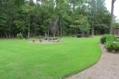 Homer's zoysia lawn 9-17-15 (6)